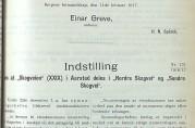Innstillingen til Formannskapet om deling av Skogveien i Søndre og Nordre Skogveien i 1917. Bergen Kommunes Forhandlingsprotokoller, 1916-17.