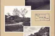 Kolonihager på Slettebakken,  juni 1958
