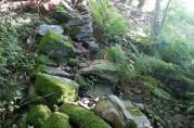 Rester av steingarden er ennå synlig i terrenget.