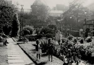 Muséhagen ble anlagt i årene 1897-99. Hagen er på 14 mål, og umulig å utvide. Ny Botanisk hage ble derfor opprettet på Milde i 1996. Fotograf: Ukjent. Arkivet etter Reguleringsvesnet, Bergen Byarkiv.