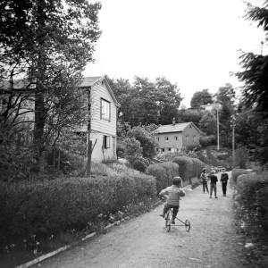 Fotografi fra Slettebakken kolonihager fra juni 1958, signert D.L.P. Arkivet etter Reguleringsvesenet, Bergen Byarkiv.