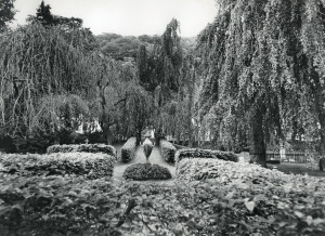 Assistentkirkegården med Ole Bulls gravsted ved den sentralt plasserte urnen. Fotograf: Ukjent.