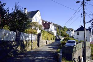 Nubbebakken har navn etter eiendommen Nubben som opprinnelig var en del av Lungegården. Fotograf: Knut Skeie Aksdal, Bergen Byarkiv, 2013.