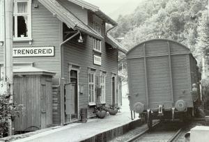 Trengereid jernbanestasjon. Udatert foto. Fotograf: Ukjent. Arkivet etter Morgenavisen AS, Bergen Byarkiv.