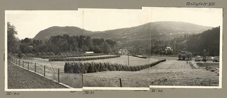 Jordbruksland legges ut til boligfelt i Fyllingsdalen på 1960-tallet. Fotograf: Ukjent. Arkivet etter Reguleringsvesenet, Bergen Byarkiv.