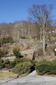 Forskjønnelsen ble opparbeidet som parkområde av tollinspektør H. M. Lassen i 1799.